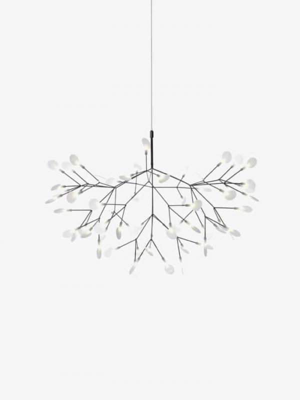 heracleum-nickel-700x933